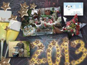collage_2012-12-21_19-30-37.p