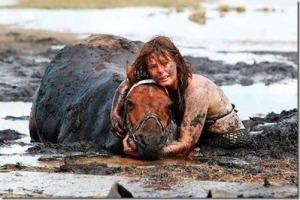 L'incroyable histoire de la fidélité d'une femme à son cheval - elle passé trois heures à tenir sa tête au-dessus de la marée après qu'il se soit coincé dans la  boue sur une plage en Australie. Un cheval est coincé jusqu'au cou dans la boue sur une plage pendant que la marée monte. Son propriétaire, Nicole Graham, qui se promenait une après-midi,  est restée avec lui alors que les secouristes ont lutté pendant trois heures pour  le sortir. Le cheval de 500 kg, nommé Astro, a été libéré avec l'aide d'un tracteur et un  harnais à Avalon Beach à Geelong, Victoria, Australie.